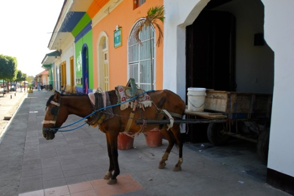 Typical Nica horse cart